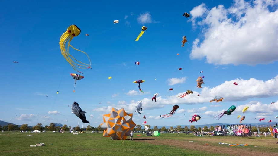 festival-plan-air-920xauto_0_1